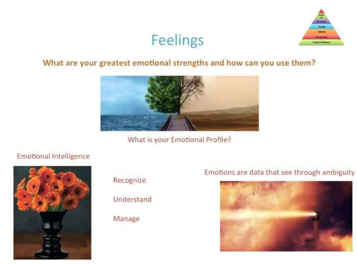 Carol-Kauffman-The-PERFECT-Scan-Feelings-level